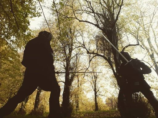 Two silhouetted combatants sparring with long swords in a forest.